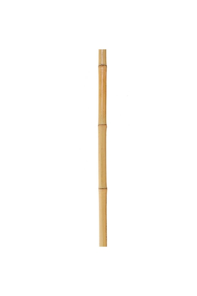 Bambu Çucuk Naturel Renk 1,5 m 1 Adet