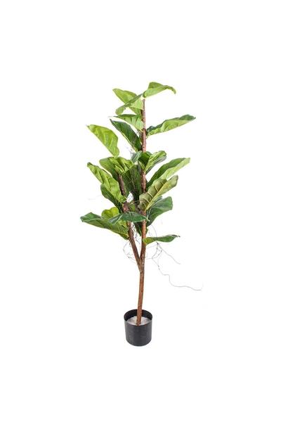 Yapay Kauçuk Ağacı Yeşil Renk 150cm 1 Adet