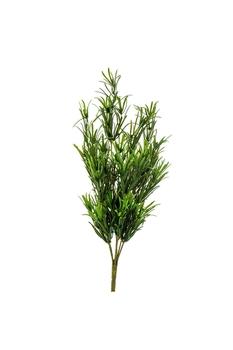Yapay Bitki Podocarpus 44cm 1 Adet - Thumbnail