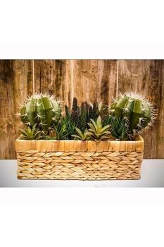 Yapay Kaktüs Bitkisi Yeşil Renk 15cm 1Adet - Thumbnail