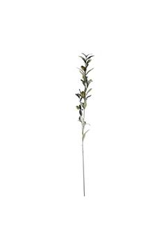 Yapay Zeytin Dalı Kahverengi 82cm 1 Adet - Thumbnail