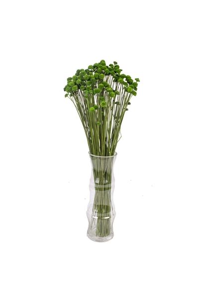 Yapay Botao Bitkisi Yeşil Renk 48cm 1 Adet