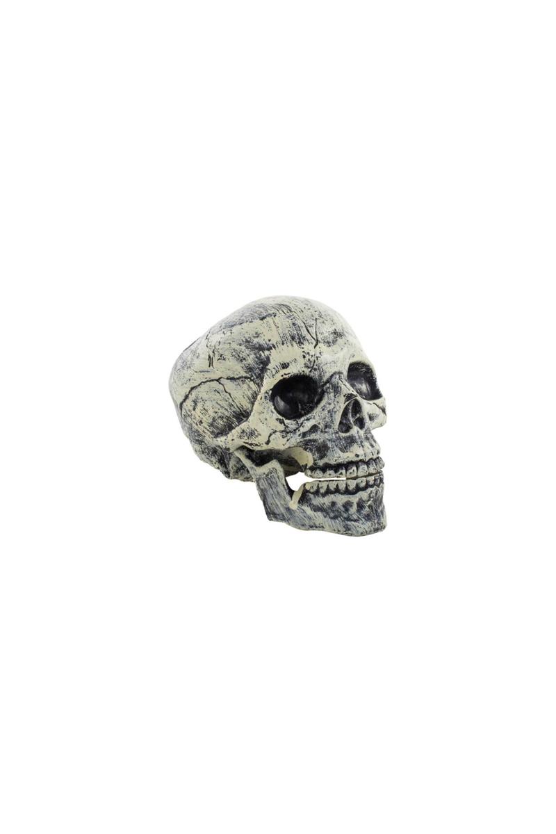 Cadılar Bayramı Plastik Kurukafa Dekor Süs 14x19x16cm 1 Adet - Thumbnail
