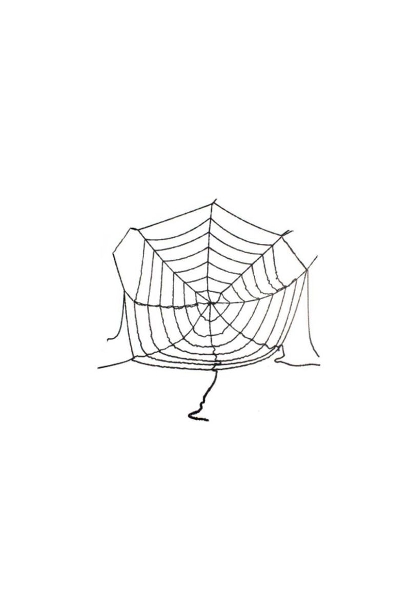 Lüks Siyah Örümcek Ağı 180cm 1 Adet