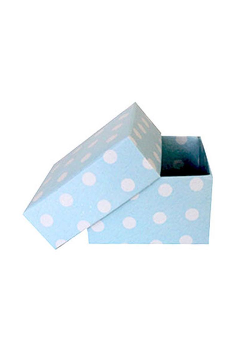 Mavi Puantiyeli Küçük Kutu 10lu